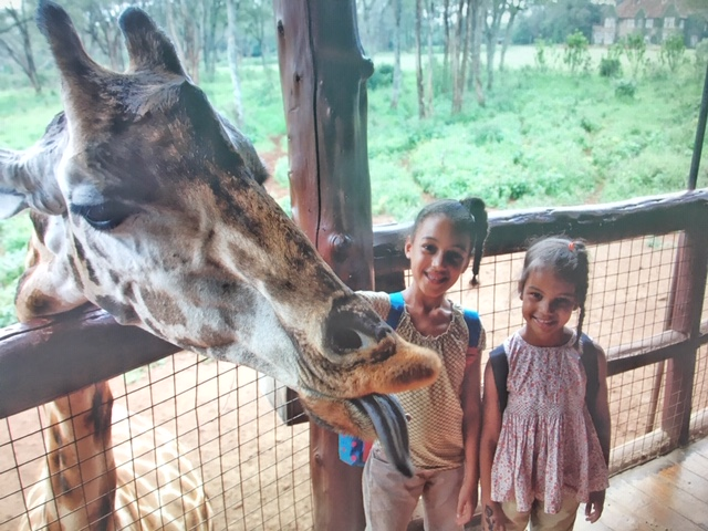 Kids love animals. Try to incorporate a zoo or animal park in your travels. Photo credit: Monique White