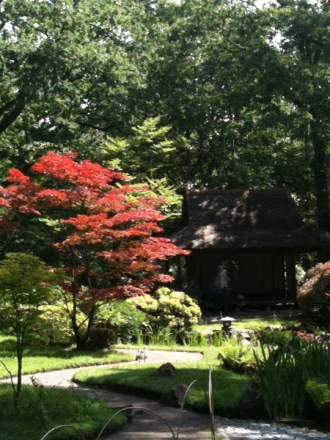 Photo Friday: Japanese Garden at Clingendael