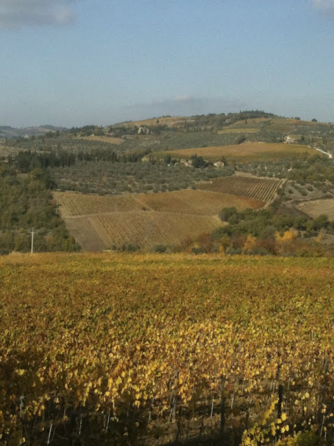 Florence, Italy wine region