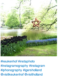 Keukenhof in an Instagram