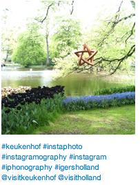 Keukenhof in an Instagram