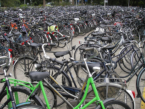 "When visiting Holland, ""go Dutch"" and get on a bike. But before you do, here are some safety rules to keep in mind to help you better enjoy your cycling experience. Photo credit: Google Images"