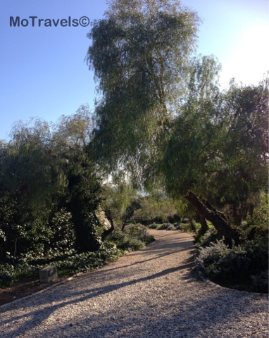Serenity in the Art Garden