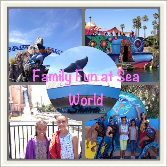 Family Fun at Sea World