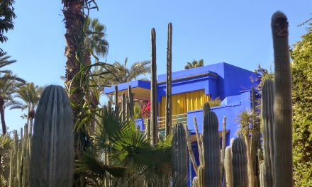The Magnificient Jardin Majorelle