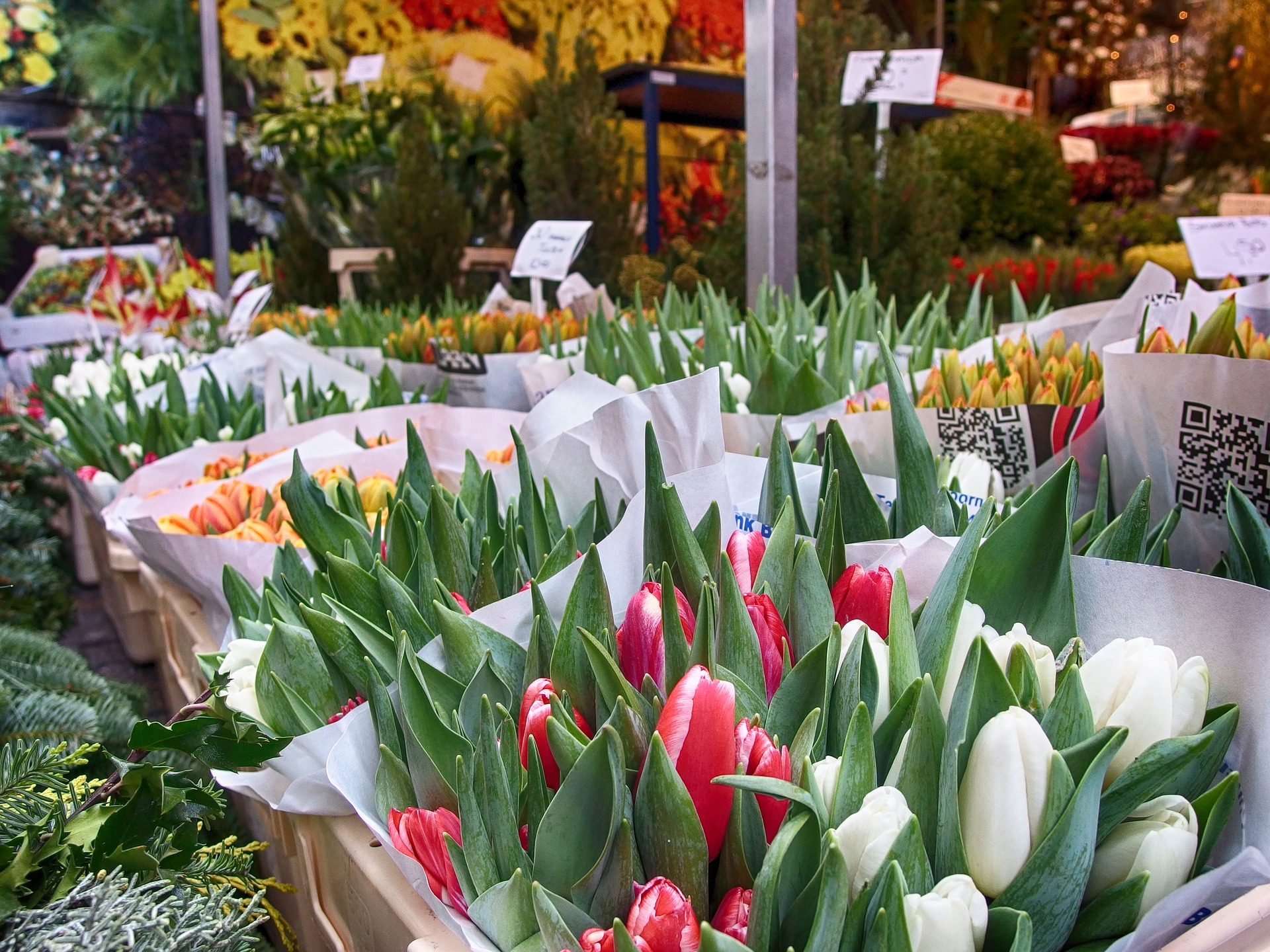 The Netherlands is the international trade center for flowers, why not buy a beautiful bouquet for your love?