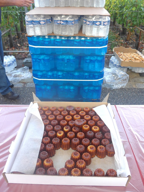 Local specialty, cannelé bordelaise.