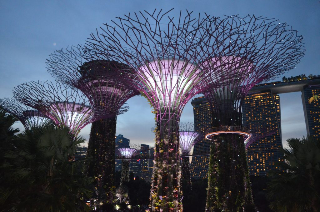 The amazing supertrees are one of Singapore's most attractions. Photo credit: Monique White