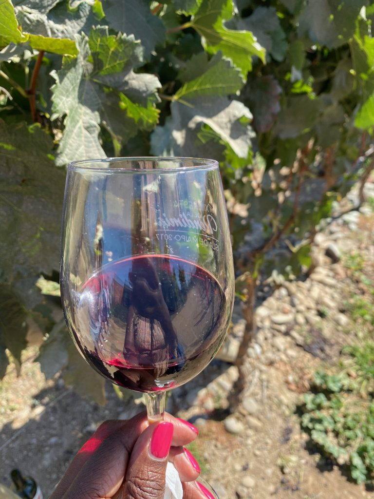Maipo Valley Wine Region | Chile Wine Region | Wine Travel | Chile Wine Tour | Chile Itinerary | Things to Do in Chile | Santiago Travel Tips | Santiago Wine Itinerary